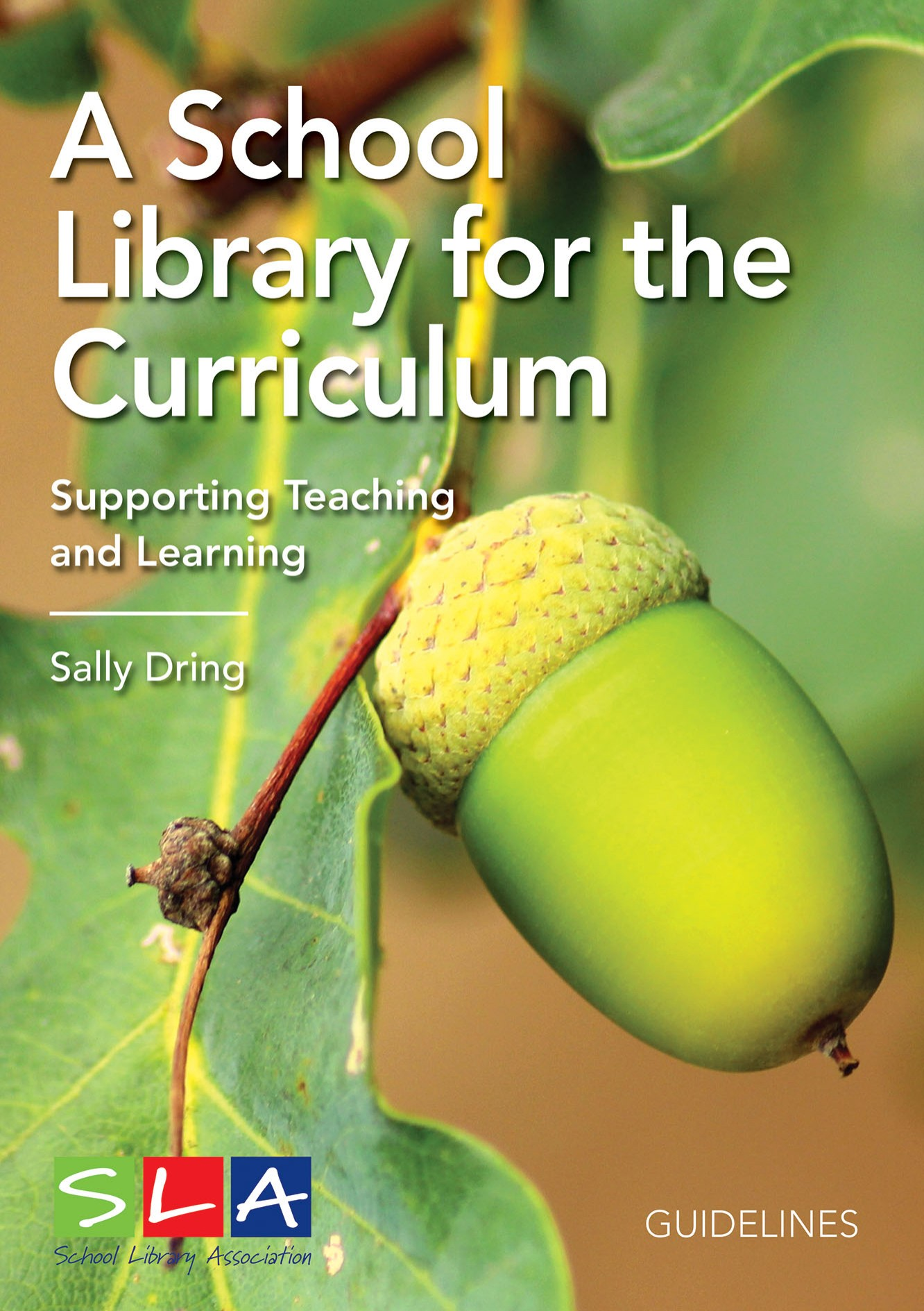 School Library for the Curriculum cover